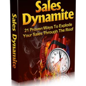 Sales Dynamite Large 300x300 - Support